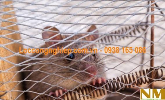 Địa điểm bán lưới chống chuột